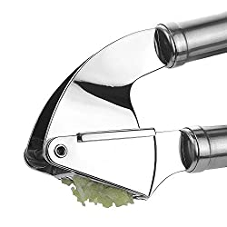 Garlic Press From Dovetail , Long Lasting Stainless Steel, Hand Held Squeezer View It Here