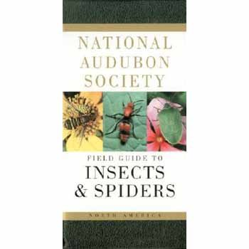 Audubon Society FIELD GUIDE TO NORTH AMERICAN INSECTS & SPIDERS, Lorus & Margery Milne