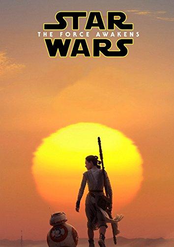 映画 スターウォーズ フォースの覚醒 ポスター 42x30cm STAR WARS エピソード7 [並行輸入品]