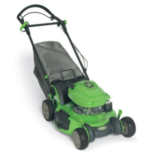 Buy Lawn-Boy Insight Series 21-Inch 6.5 HP Tecumseh Easy Start Gas Powered Engine Variable Speed Self-Propelled Lawn Mower #10684