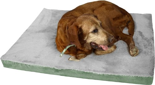 Dog Beds Memory Foam 1943 front