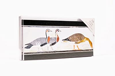 Egyptian Geese Notecards