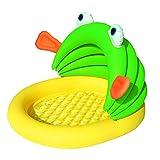 Pataugeoire grenouille