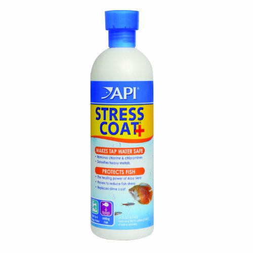 API Stress Coat Water Conditioner, 16-Ounce (Fish Tank Conditioner compare prices)