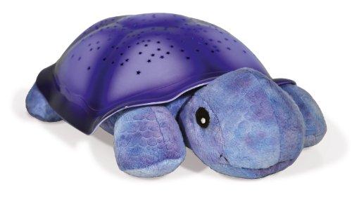 Calming Children To Sleep Beneath A Twilight Ladybug
