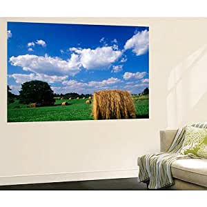 48x72 adam jones view of hay bales in farm for Paint and wine lexington ky