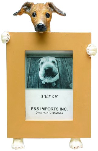 E&S Pets 35315-106 Small Dog Frame