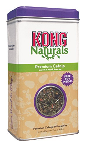 KONG Naturals Premium Catnip, 2-Ounce (Packaging may vary)