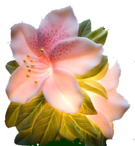 Azalea Night Light - Ibis & Orchid Flowers of Light Collection
