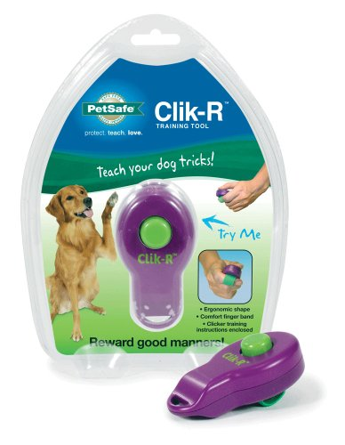 Premier Clicker in Retail Package Dog Collar