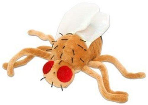 Giant Microbes Fruit Fly (Drosophila Melanogaster) Plush