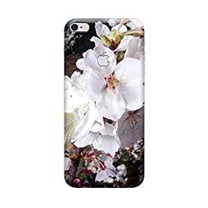 iShell Premium Printed Mobile Back Case Cover With Full protection For Apple iPhone 6 Apple Cut (Designer Case)