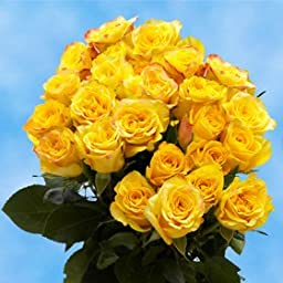 2 Dozen Yellow Roses | Super Splendid! | Fresh Flowers Express Delivery | Perfect for Birthdays, Anniversary or any occasion.