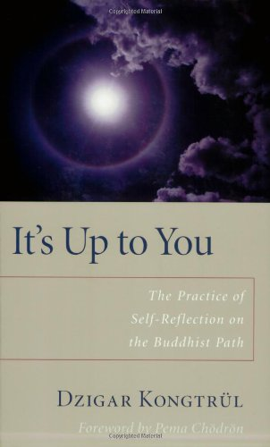 It's Up to You: The Practice of Selfreflection on the Buddhist Path