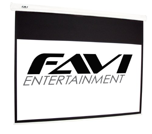 Learn More About FAVI HD-100 16:9/100-Inch Electric Projector Screen