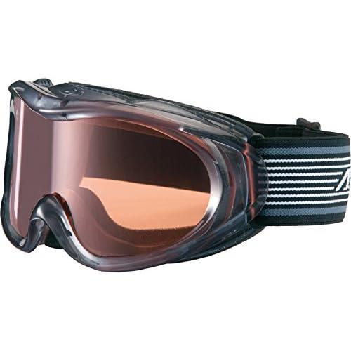 AXE(アックス) スキーゴーグル UVカット ユニセックス スタンダードレンズ ライトスモーク AX460-ST