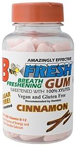 B-Fresh Inc - Cinnamon Gum, 100 gum
