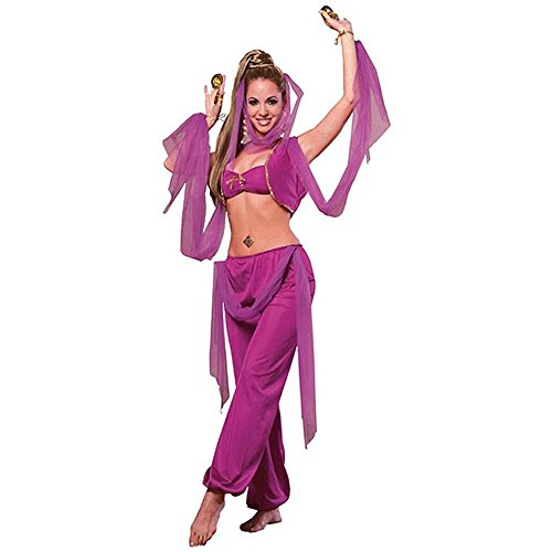 Arabian Princess Adult Costume Set - Standard