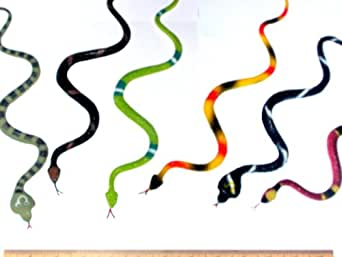 """12 Rubber RAINFOREST Snakes/14"""" Rain Forest Snake Figures/PARTY Favors/NATURE Toys/Anaconda/BOA Constrictor/Rattle/CORAL/Viper"""