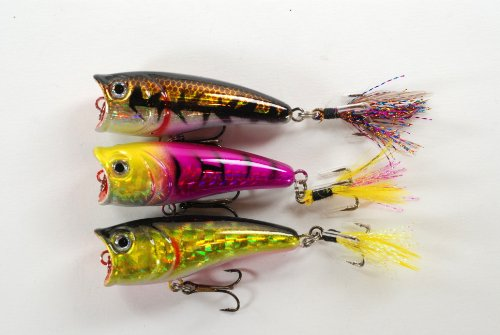 Akuna Topwater Chugger/Popper Fishing Lures for Bass and Trout (Pack of 3), 2.4-Inch