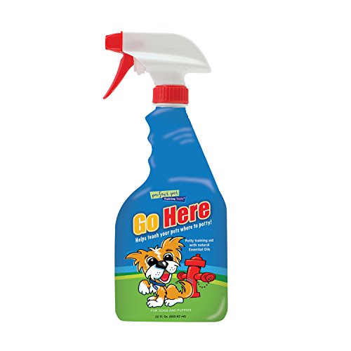 Davis Go Here Potty Training Aid, 22 oz (Pet Potty Training Spray compare prices)