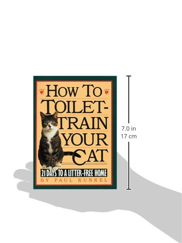 how to potty train your cat essay If your cat is neglecting to use the litter box, check out some information as to why  this might be happening and how you can fix the problem.