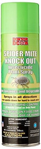 doktor-doom-spider-mite-knockout-16-ounce