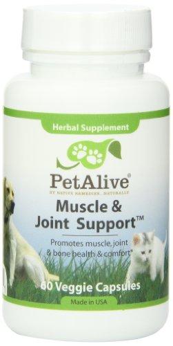 Muscle petAlive et soutien interarmées pour se