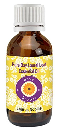 Pure Bay Laurel Leaf Essential oil 15ml- Laurus nobilis