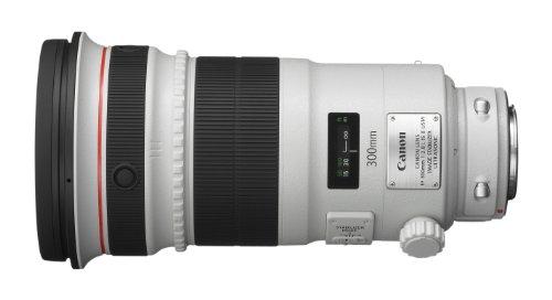 Canon EFレンズ EF300mm F2.8L IS II USM 単焦点レンズ 望遠