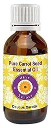 dève herbes Pure Carrot Seed Essential Oil (Daucus carota) 100% Natural & Therapeutic Grade (5-1250ml)