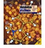 img - for Metabolism at a Glance (At a Glance (Blackwell)) (Paperback) - Common book / textbook / text book