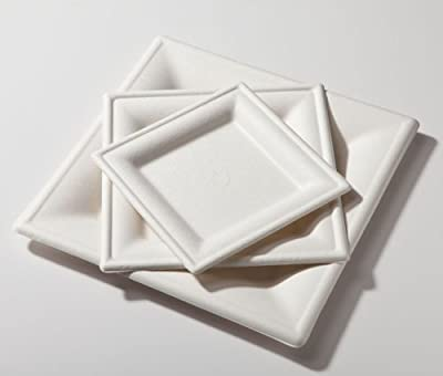 "6"" Biodegradable Square Plate Sugarcane"