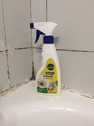 anti-moho-stop-mould