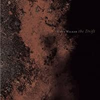 Scott Walker - The Drift (2-LP) Import 2012