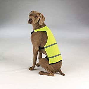 Amazon.com : Dog Safety Vest - Yellow Hunting Vest for