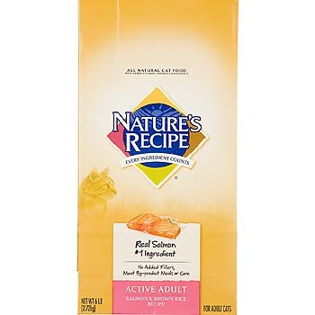 Image of Nature's Recipe Salmon & Brown Rice Active Adult Cat Food, 6 lbs.