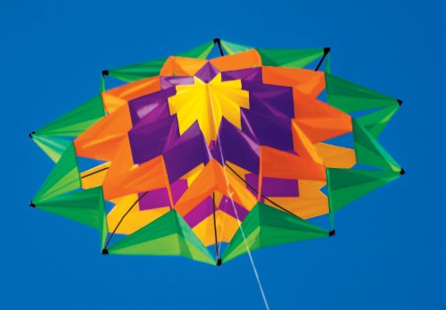 Lotus Single Line Box Kite