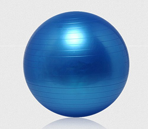 Balance Ball Blue: Faswin Body Balance Ball Kit,fitness Exercise And