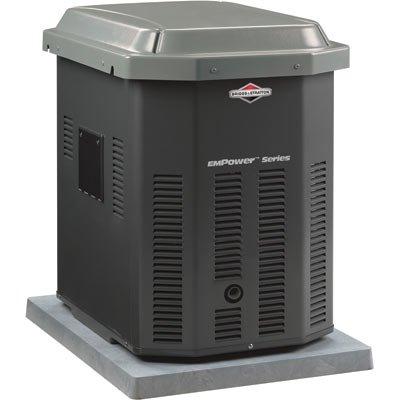 Briggs & Stratton 40243 10,000 Watt EmPower Natural