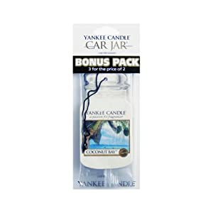 Yankee Candle Co 1114306 Yankee Candle Car Air freshener