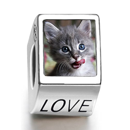 rarelove-sterling-silver-a-hungry-cat-animal-photo-love-european-charm-bead