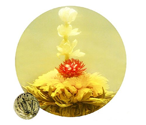 Be Oneself Fresh Flavor Natural Craft Flower Tea Blooming Jasmine Flower Tea Ball Jasmine Fairy Set Of 10 80G Unique Healthy Tea
