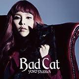 Bad Cat♪矢沢洋子