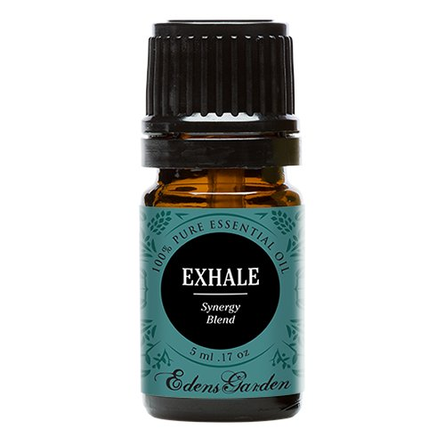 Exhale Synergy Blend Essential Oil by Edens Garden (Comparable to DoTerra's Breathe & Young Living's Raven Blend)- 5 ml