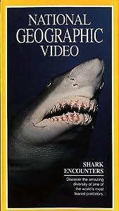 National Geographic:Shark Enco