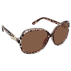 AAO+ Polarized Ladies Sunglasses-Balang016