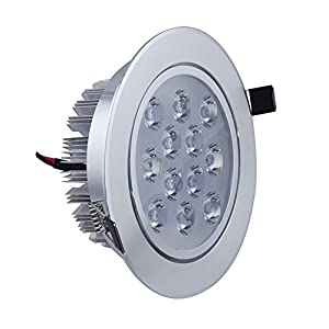 Jambo Warm white One pieces of Ceiling Light Led Celling Lamp power 12W Voltage 86-265V Aluminum Shell by Celling Led Lighting