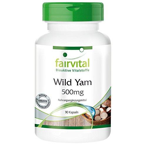 fairvital-wild-yam-90-capsulas-vegetarianas-de-extracto-de-dioscorea-500-mg-con-un-20-de-diosgenina-