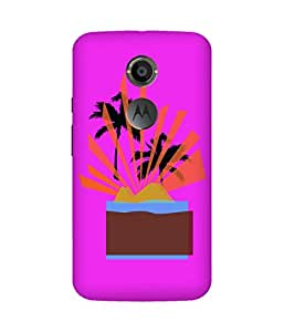 Nature (20) Motorola Moto X Case